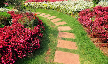 Landscaping in Highland Park STATE% Landscaping Services in  Highland Park STATE% Landscapers in  Highland Park STATE%
